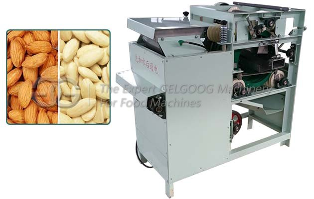 Wet Type Almond Peeling Machine With Factory Price