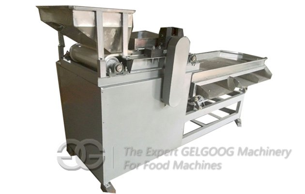 Automatic Macadamia Nut Cutting Machine